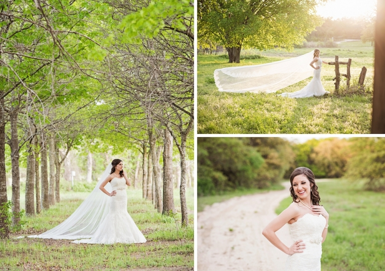 Outdoor bridal session with cathedral veil