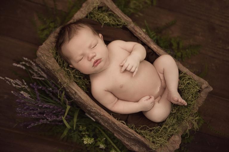 Lewisville Newborn Photographer