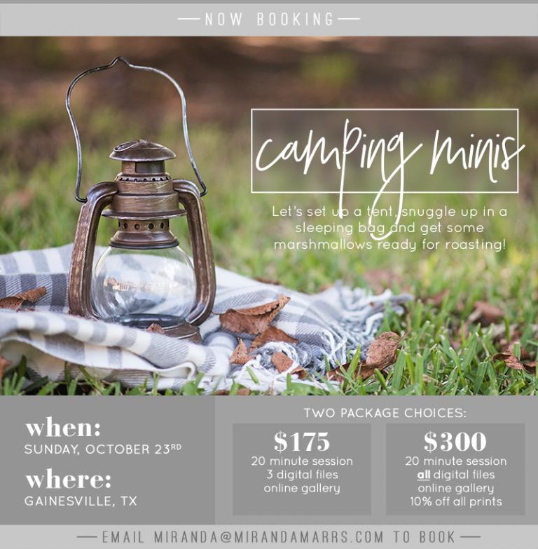 2016-camping-minis