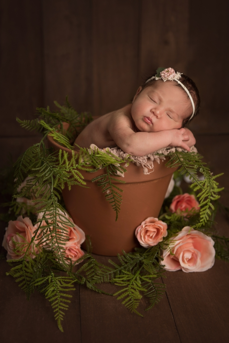 Frisco and Plano Newborn Photographer