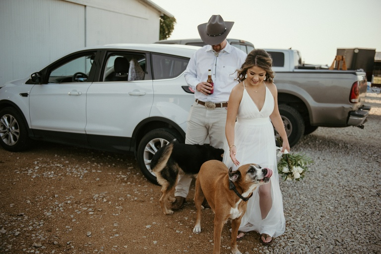 Private Ceremony in Argyle with Dogs